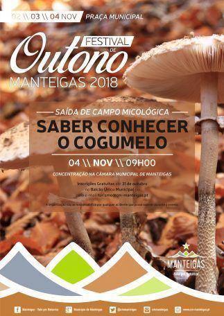 Festival de Outono Manteigas 2018 – Saída de Campo – Saber Conhecer o Cogumelo
